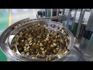 स्वचालित इमदादी पिस्टन सॉस, शहद, जाम, उच्च चिपचिपापन तरल भरने की रेखा