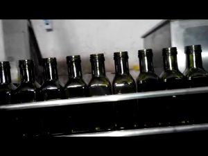 पूर्ण स्वचालित जैतून का तेल रैखिक 6 नलिका तेल की बोतल भराव
