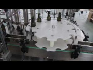 गर्म बेच CE मानक स्वचालित जैतून का तेल भरने की मशीन